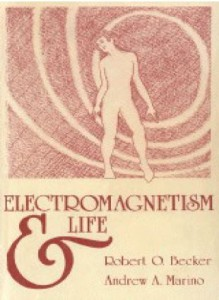 electromagnetism and life - cover